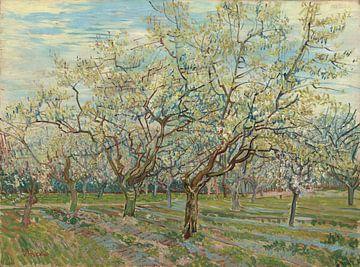 White Orchid - Vincent van Gogh  von Marieke de Koning