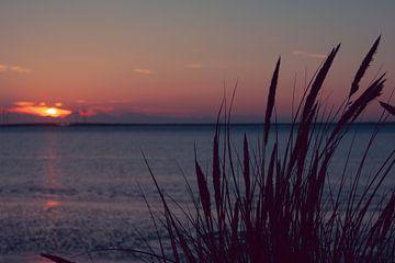 Zeeland Sonnenuntergang von Maaike Coers
