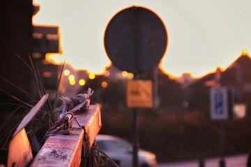 Industriële zonsondergang in Noordwijk, Nederland van Bram Jansen