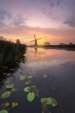 Moulin à vent d'Oudendijk