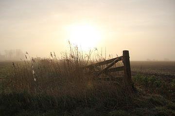 Texel Landschap 023 van Starworks Lien van der Star