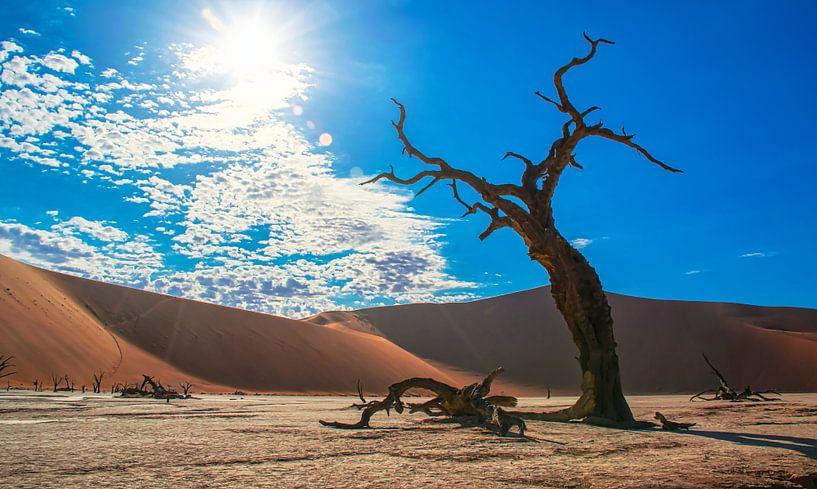 Skelet van een boom in de Deadvlei, Namibië van Rietje Bulthuis