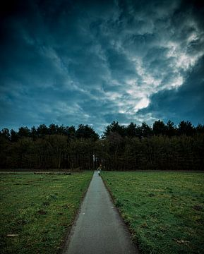 Spaziergang in den Wald von Wesley Kole