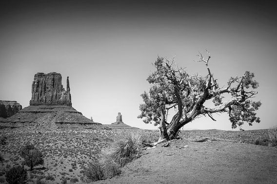 MONUMENT VALLEY West Mitten Butte black and white