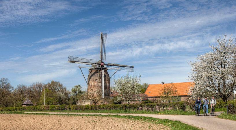 De Torenmolen van Gronsveld tijdens de bloesem van John Kreukniet