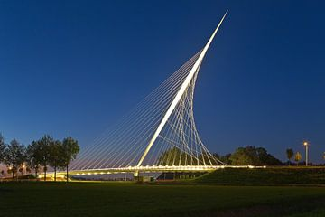 Calatravabrug - Harp 2 van