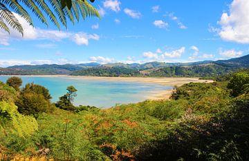 Abel-Tasman-Nationalpark Neuseeland von GoWildGoNaturepictures