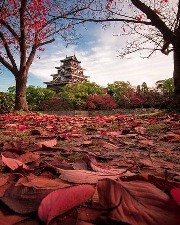 Autumn in Hiroshima von Niels Tichelaar