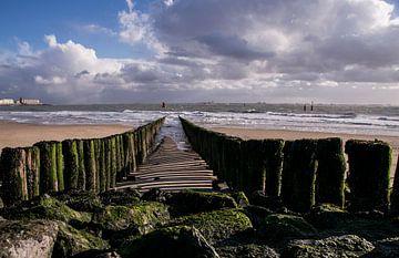 An der Zeeländischen Küste von Stephan Scheffer
