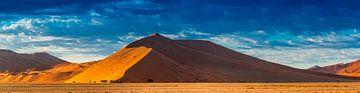 De rode duinen in de Sossusvlei in de ochtendzon, Namibië van Rietje Bulthuis