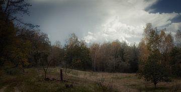 Hollandse wildernis van Mart Houtman