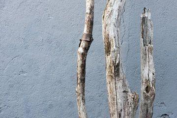 Verweert hout van Sense Photography