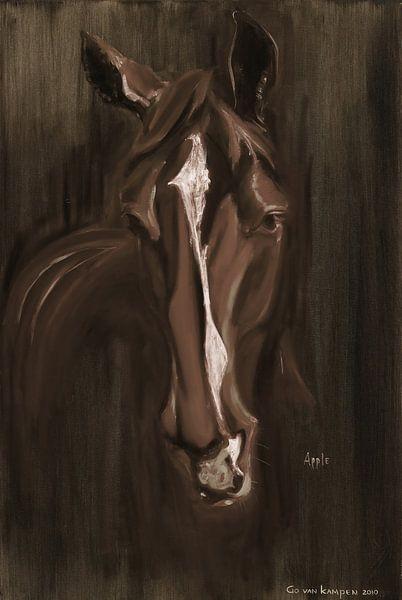 Paard Apple Brown van Go van Kampen