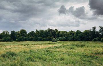 field_02 von Niko Brinkmann