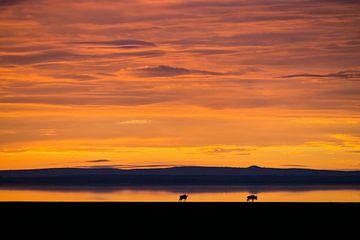 Sonnenaufgang in Afrika von Pieter Tel