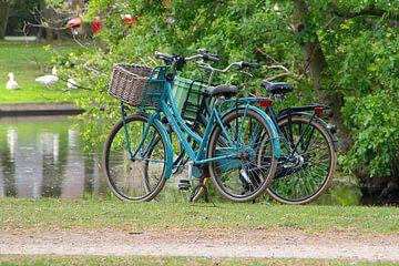 fietsen bij het park