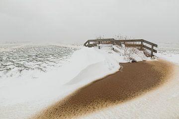 Verschneite holländische Wiesenlandschaft von FotoBob