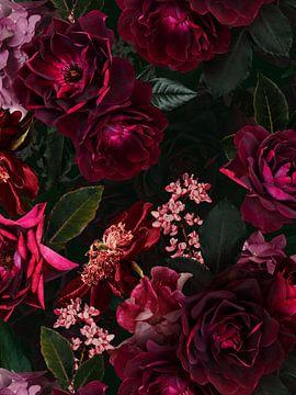 Botanischer Mitternachts Sommer Rosengarten von Uta Naumann