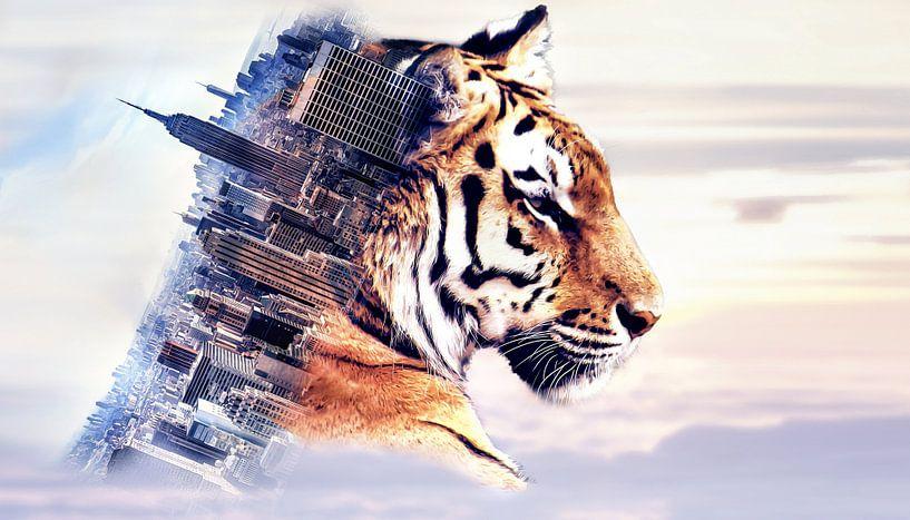 Tiger and the city van Nannie van der Wal