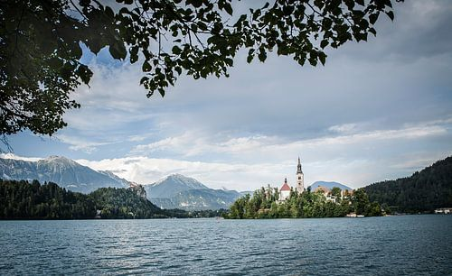 Bled Slovenie van