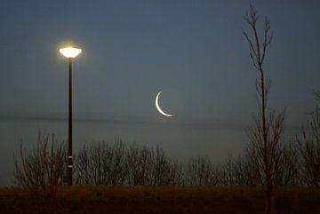 Dag nacht. van Bas Smit