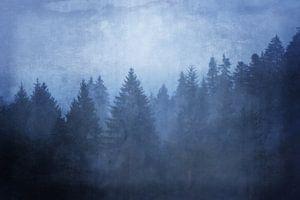 koele bossen - koele bossen - koele bossen van Susann Serfezi