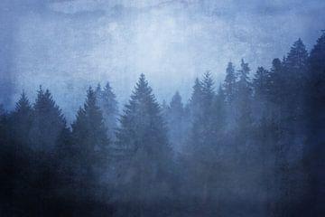 kühle wälder - cool woods von Susann Serfezi