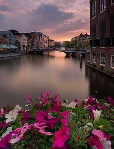 Like Venice van Jos Duivenvoorden