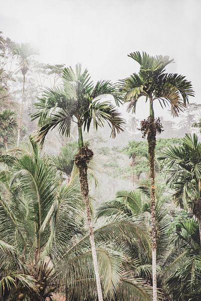 Regenwoud van MAIA prints