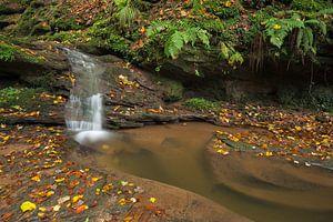 Waterval  Butzerbachtal tijdens de herfst in de Eifel,