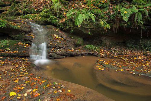 Waterval  Butzerbachtal tijdens de herfst in de Eifel,  van