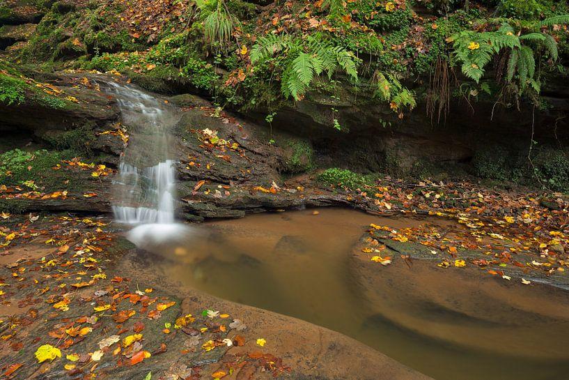 Waterval  Butzerbachtal tijdens de herfst in de Eifel,  van Rob Christiaans