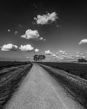 Weggetje in Gaasterland nabij Sondel in Zwart-Wit sur Harrie Muis