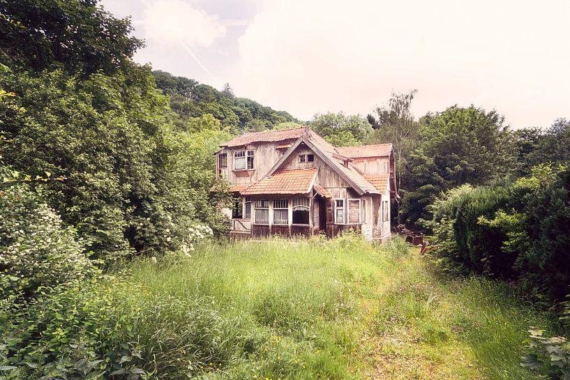 Verlassene Villa aus Holz, Belgien von Roman Robroek