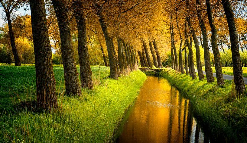 0259 Vlaanderen van Adrien Hendrickx