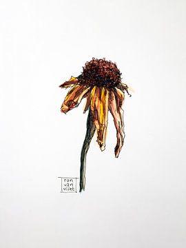 Tote Blumen 4 von Ron van Vliet