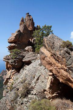 Rock auf Korsika von Kees van Dun