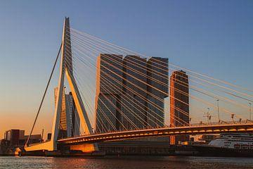 De Rotterdam van Paul Schlüter