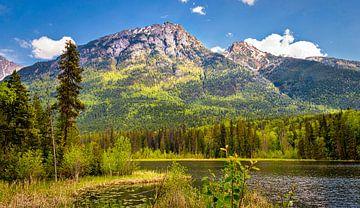 Berglandschaft im Yukon, Kanada von Rietje Bulthuis