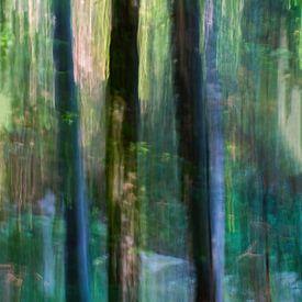 Door de bomen... II van Klaartje Majoor