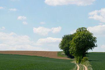 minimalistisch landschap van Frank Janssen