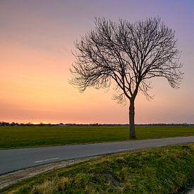 Zonsopkomst op het platteland bij Nunspeet van Jenco van Zalk