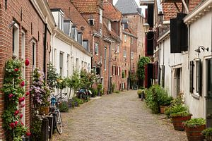 Een smal straatje met bloempotten van Jan van der Wolf