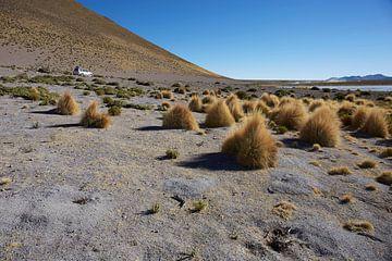 Farallon de Tara, Plateau mit Blick auf den Salzsee mit Allradantrieb im Hintergrund. von Tjeerd Kruse