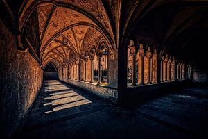 Exciting shadow games at the cloister promenade van