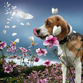 wanddecoratie van dieren op canvas poster en meer