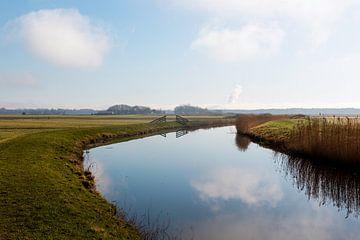 Polder von Annette van Dijk-Leek