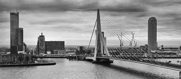 Rotterdam Skyline 45 NAP van Rob van der Teen