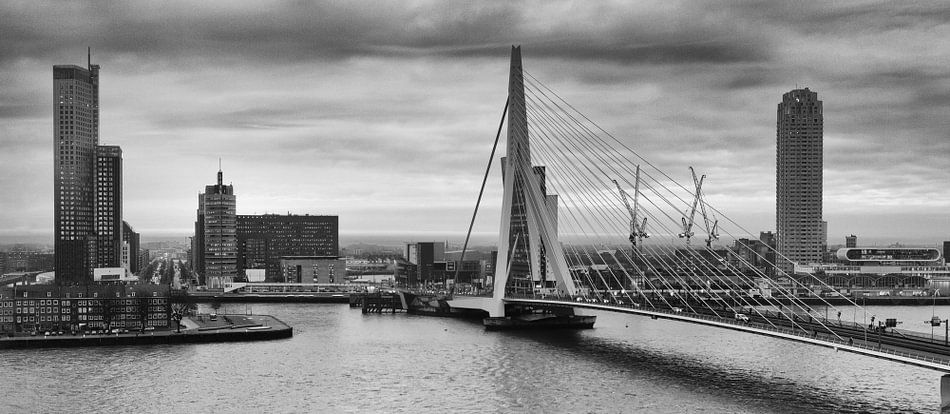 Rotterdam Skyline 45 NAP