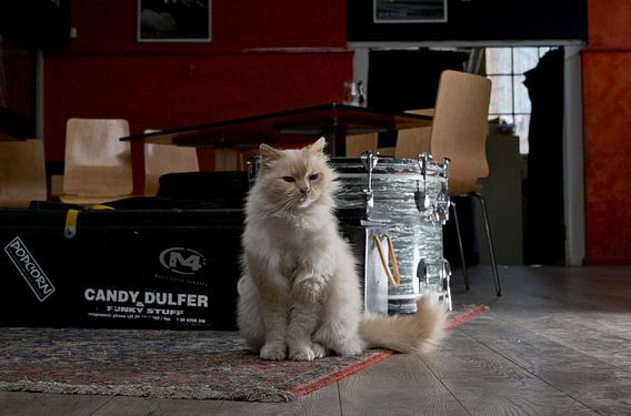 Huiskat Jazzcafé van Robert van Willigenburg